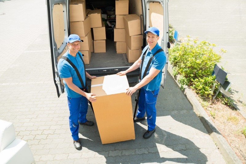 Professional Movers E1534907779631
